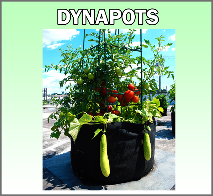 DynaPots
